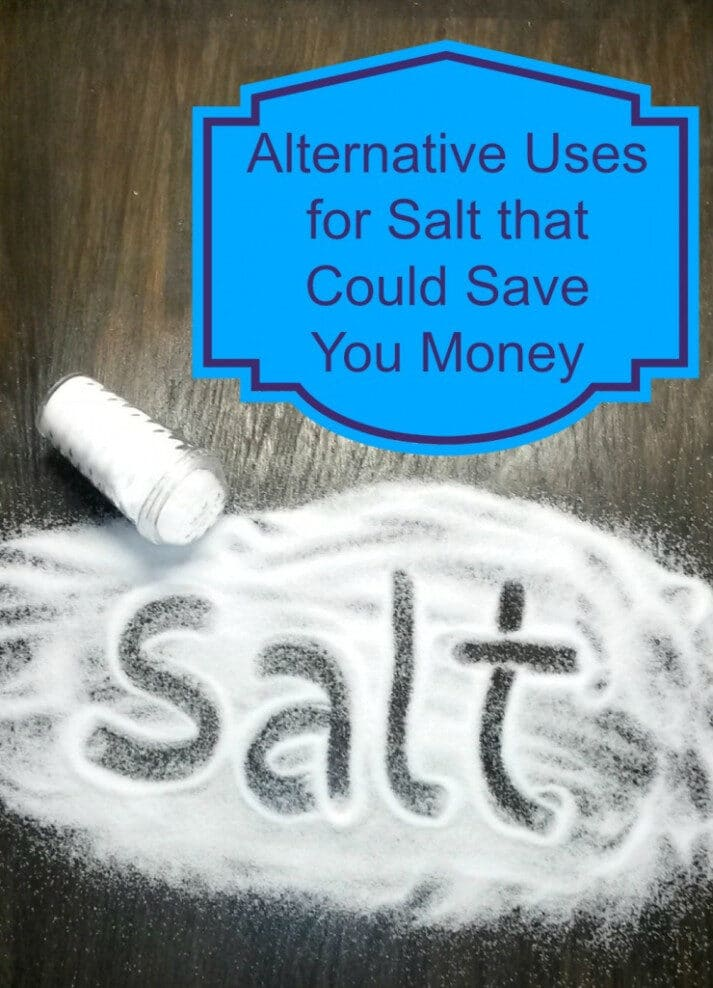 Alternative Uses For Salt That Could Save You Money 4 740x1024 6048322