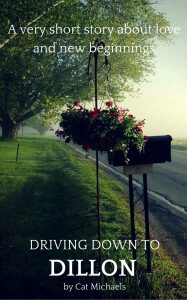 COVER Driving Down To Dillion 187x300 3128047